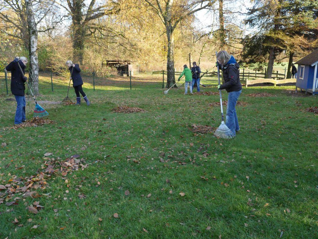 Alle Beteiligten waren tatkräftig bei der Gartenaktion dabei. Fotos: Marilena Wiegmann